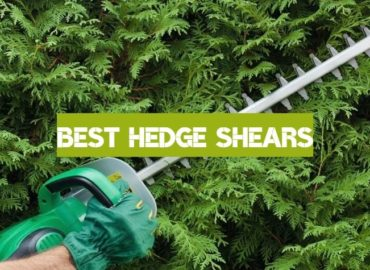 Best Hedge Shears of 2019