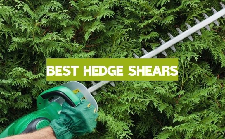 10 Best Hedge Shears of 2019