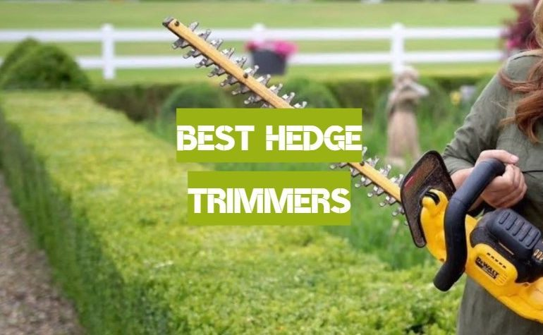 10 Best Hedge Trimmers of 2019