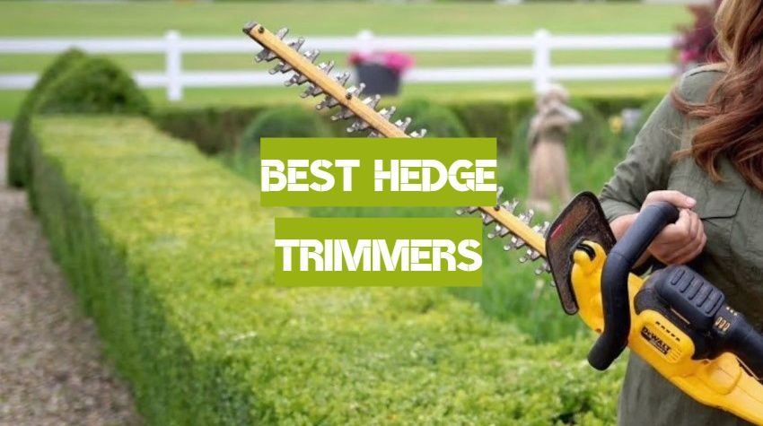 Best Hedge Trimmers of 2019