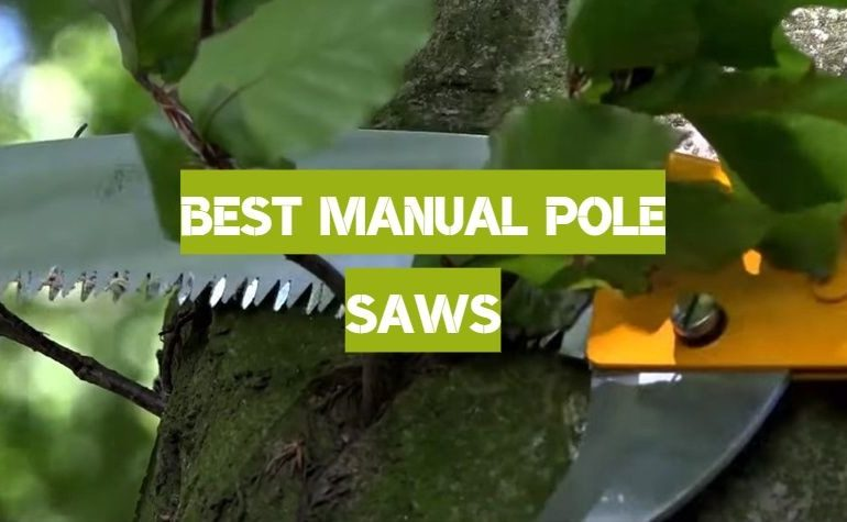 10 Best Manual Pole Saws