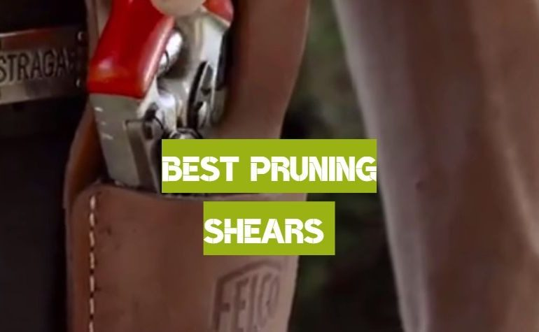 10 Best Pruning Shears