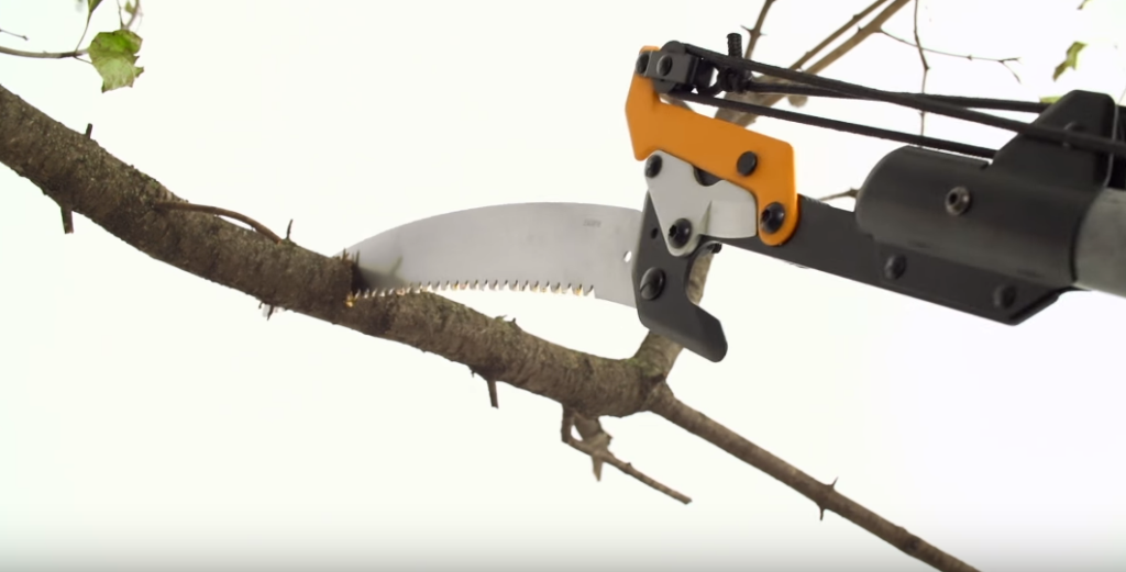 How To Use A Manual Pole Saw