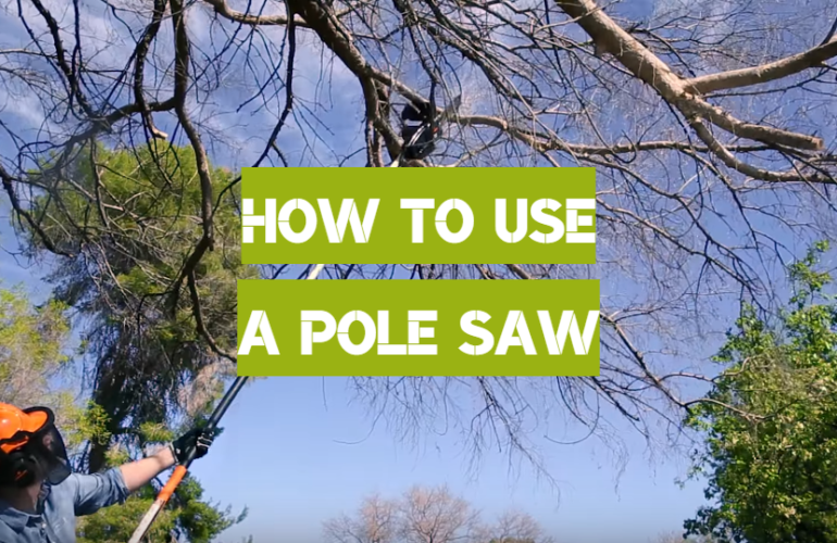 How To Use A Pole Saw: Expert Recommendations
