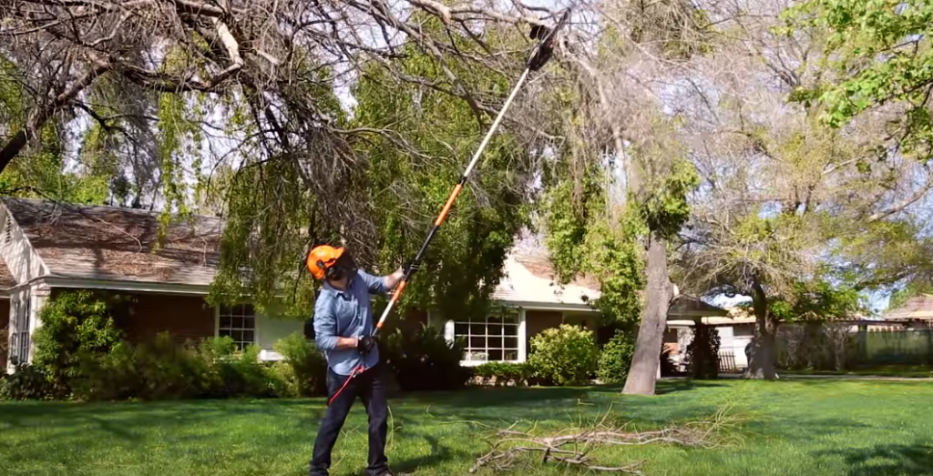 Pole Saw vs Chainsaw What is Better