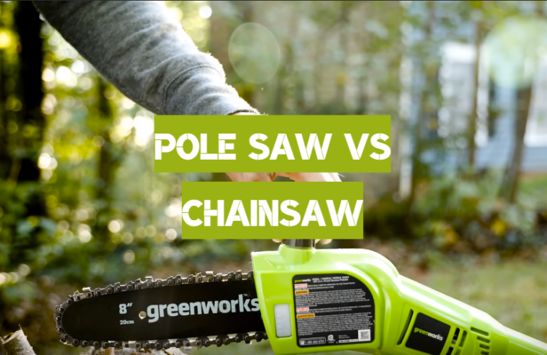 Pole Saw vs Chainsaw: What is the Best Cutting Tool for Gardening