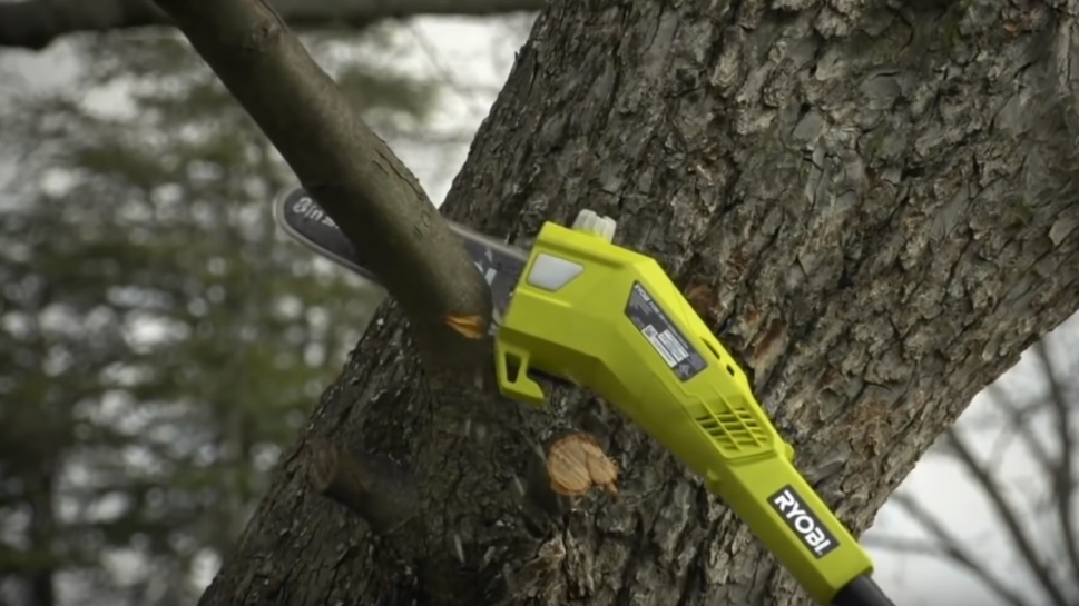 Electric vs Gas Pole Saw: The Buyer's Guide For Beginners