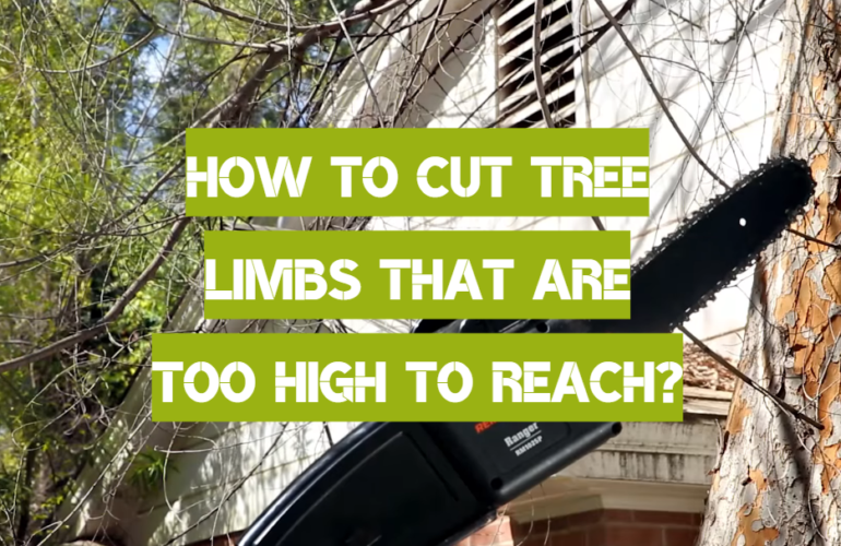 How to Cut Tree Limbs That Are Too High to Reach?