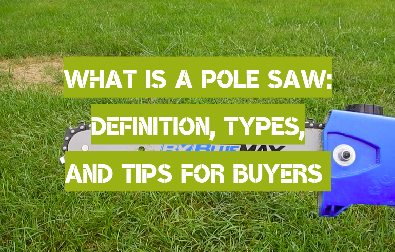 What Is a Pole Saw: Definition, Types, and Tips for Buyers