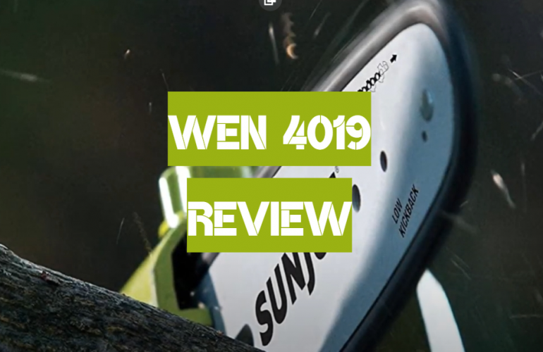 WEN 4019 Review